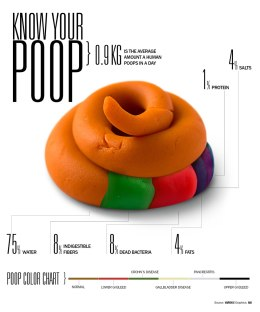poop-facts-infographic