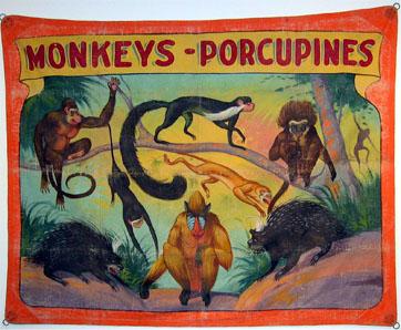 Monkeys%20-%20Porcupines%20SB%20201