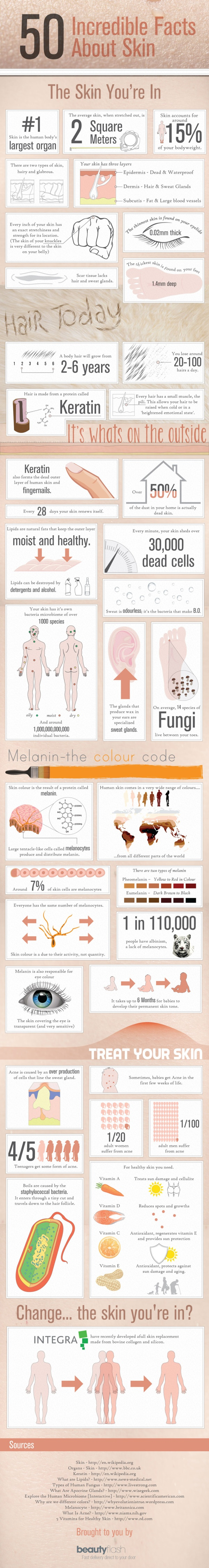 Infographic: 50 Incredible Facts About Your Skin