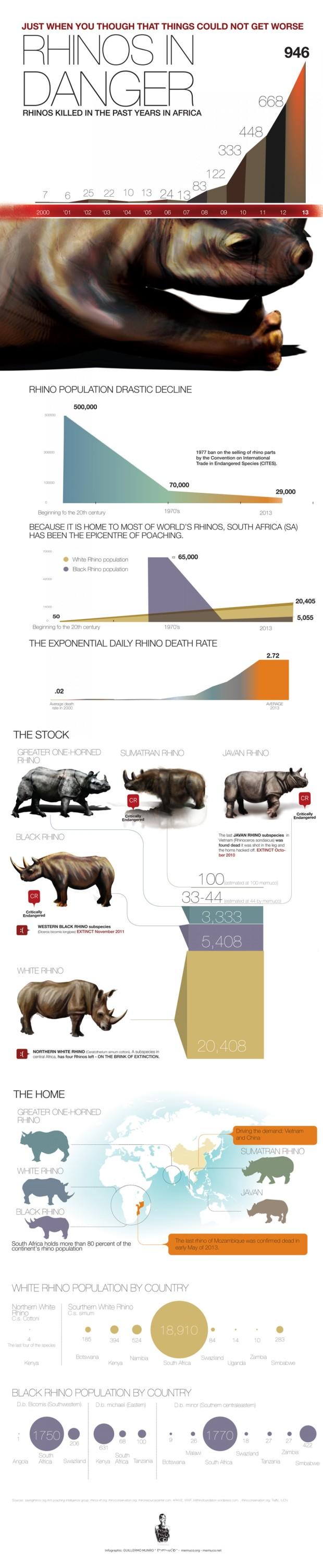 RhinosinDangerInfographic