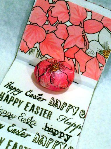 1397766443000-Sarah-Matthews-Egg-Contest