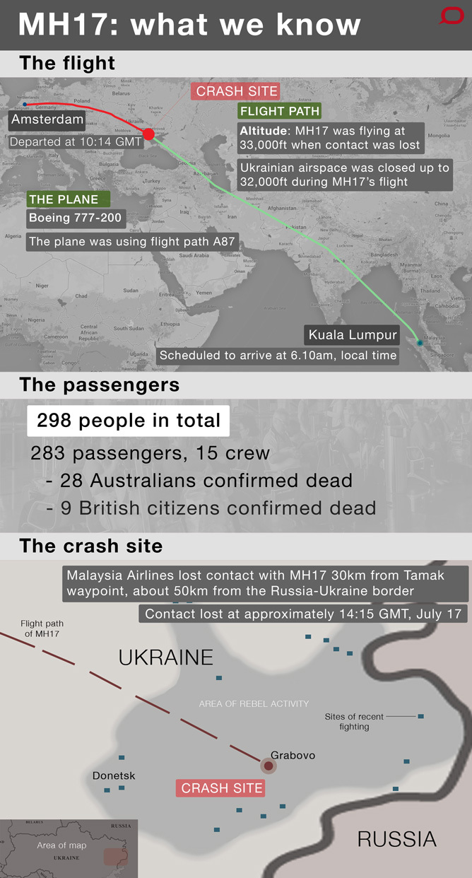 Facts About MH17 Infographic