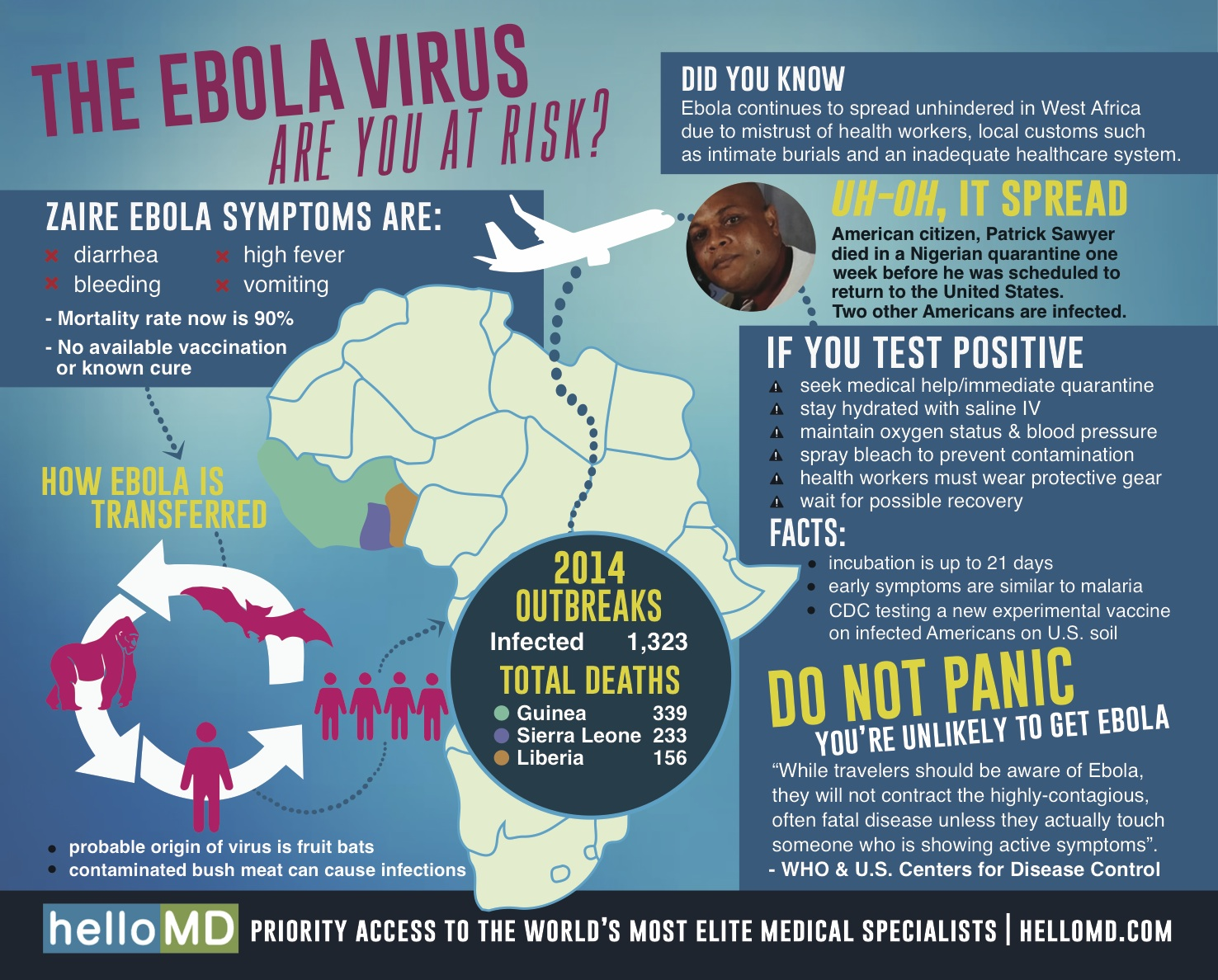 the deadly ebola zaire The reality of the ebola outbreak that hit the republic of guinea months ago has now the deadly ebola virus zaire ebolavirus (ebov) reston.