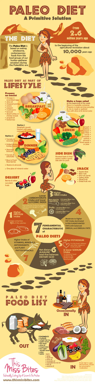 Infographic Paleolithic Diet Paleo Diet Plan For Beginners Michael Sandberg S Data Visualization Blog